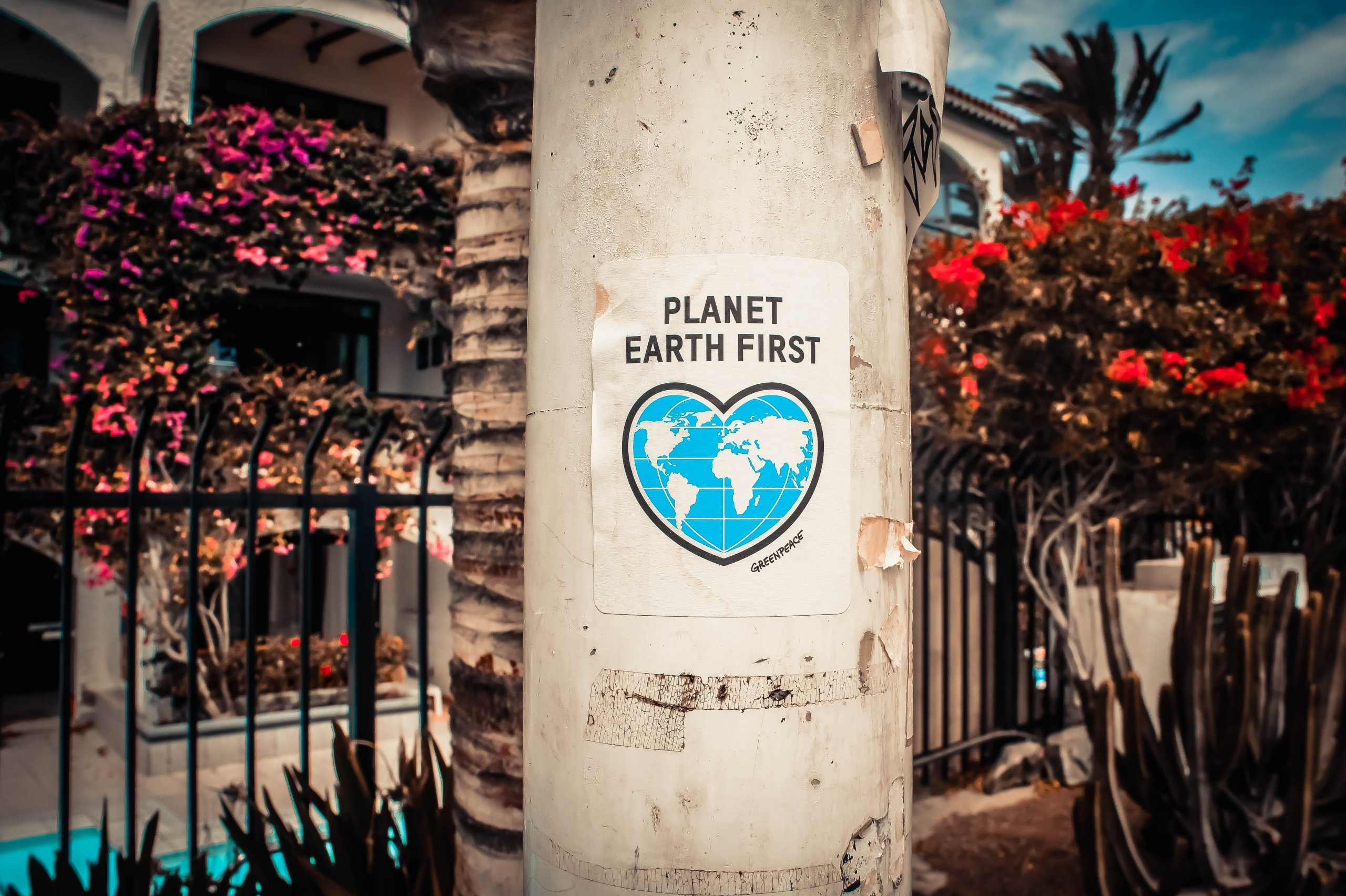 Planet Earth First Poster On A Concrete Post