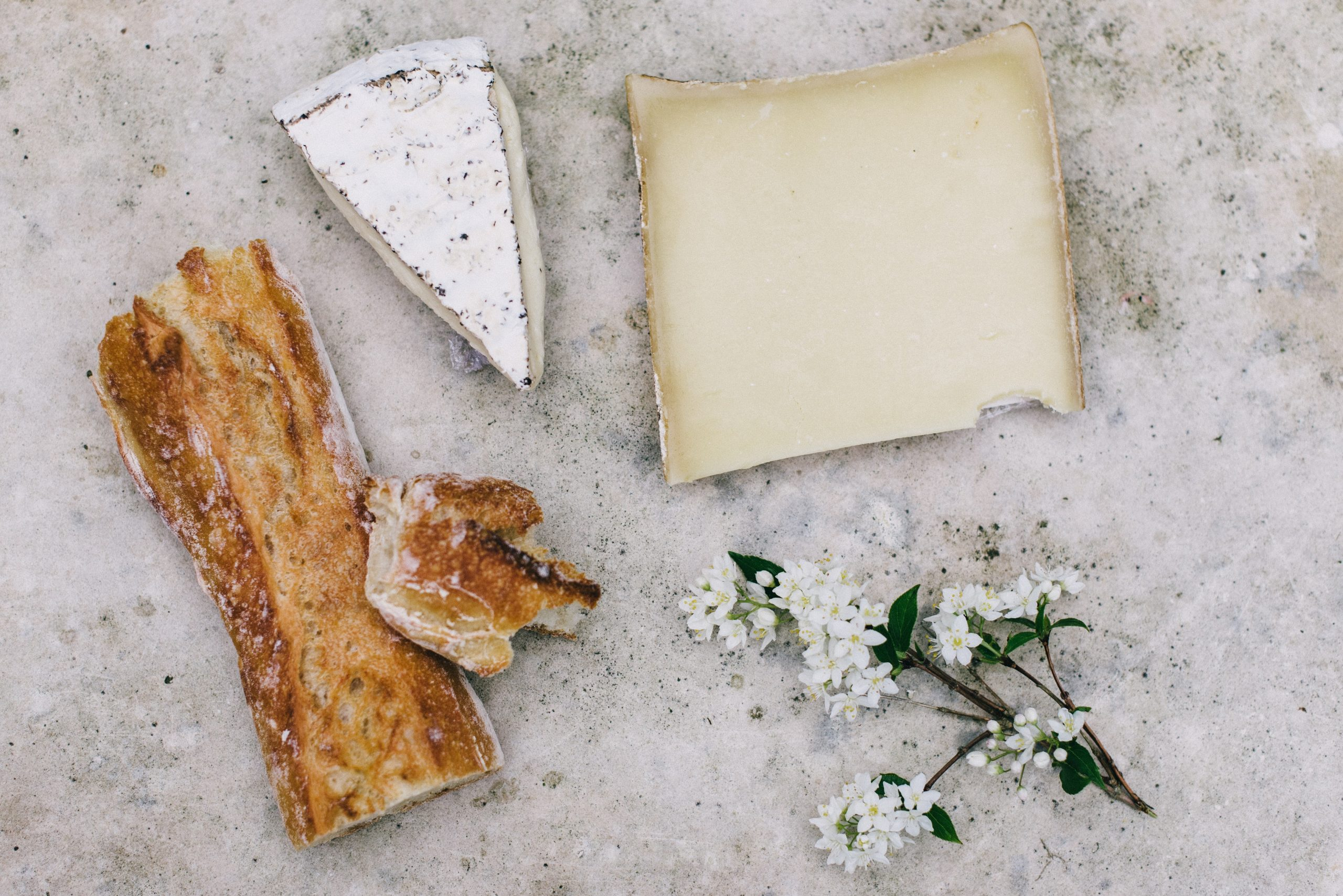 fromage végétal
