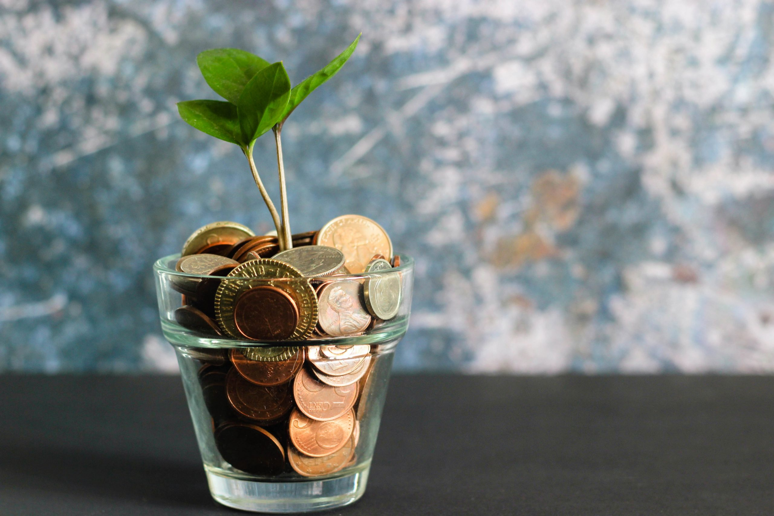 startup valuation money pot